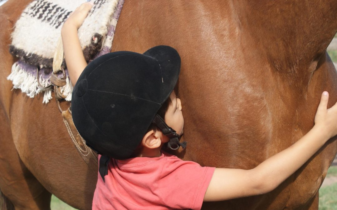 Cómo es el caballo más indicado para la equinoterapia