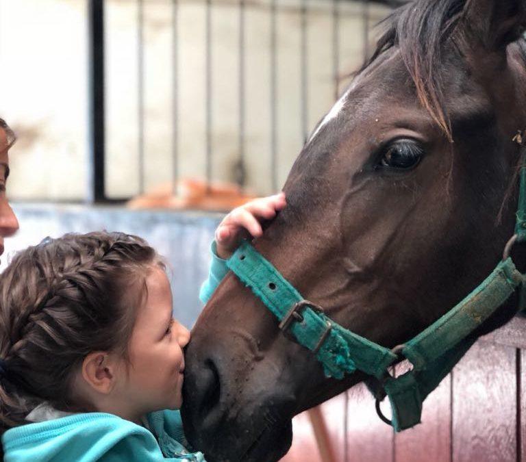 Beneficios de la terapia con animales en los niños