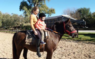 Equinoterapia: cuando los terapeutas tienen 4 patas